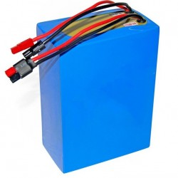 48V 60Ah LiFePO4 Battery  for 1000W Electric Bike/Electric Vehicle